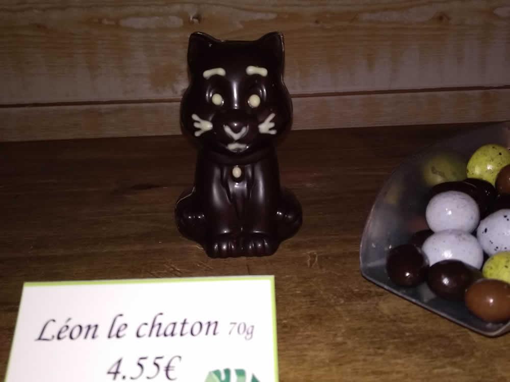 Léon le chaton